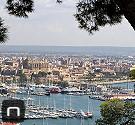 Blick auf den Jachthafen und die Kathedrale Sa Seu