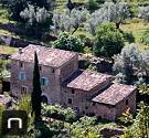 Alte Finca mit Olivenbäumen